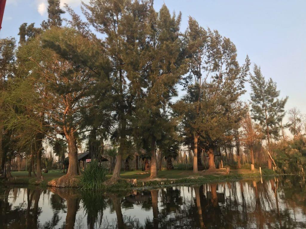 Sunset on lake Xochimilco