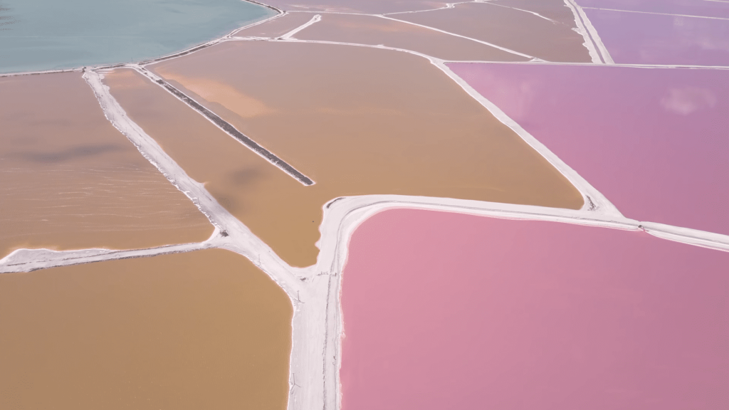 Las Coloradas Pink Lake